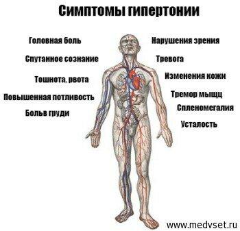профилактика высокого холестерина