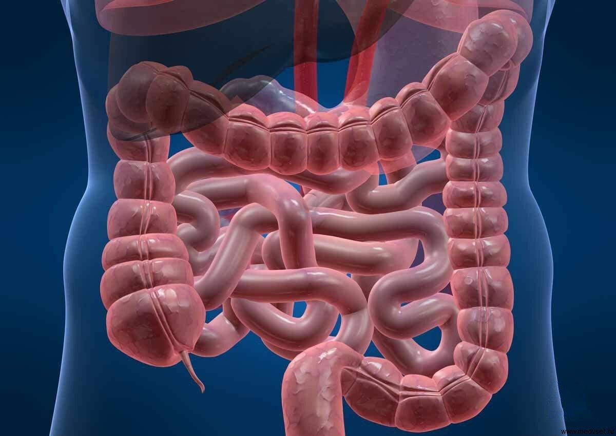 Ткани, органы, системы органов, оси и плоскости тела человека ткани.